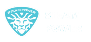 استیم پاور-دستگاه کارواش بخار و بخارشوی صنعتی